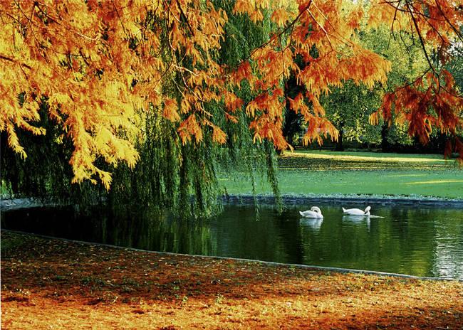 Na tragu Jeseni