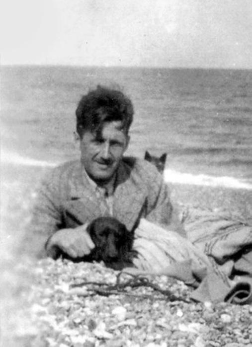 Džordž Orvel, pas i mačka na plaži