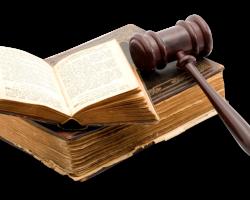 Sudski tumači kreću u borbu – prvi deo